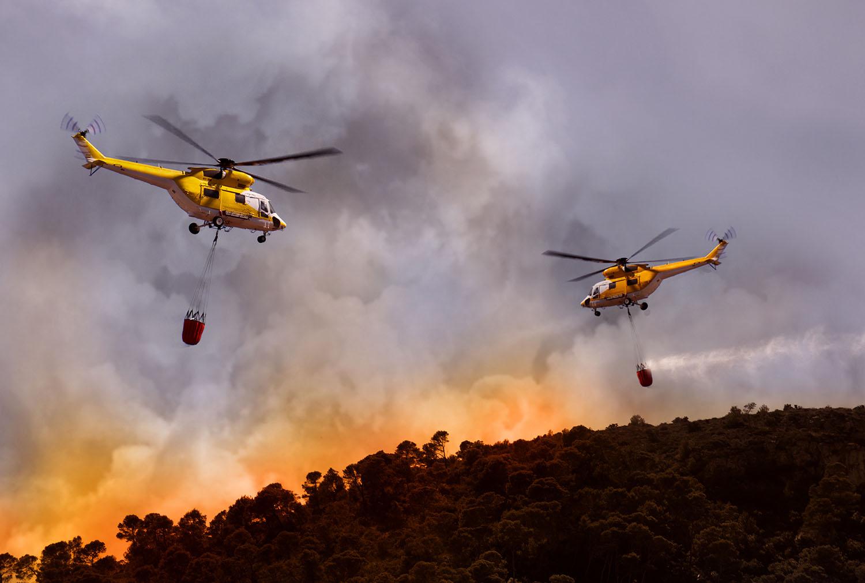 Especial planificación territorial | Las publicaciones científicas sobre incendios forestales están creciendo y tienen una gran presencia regional